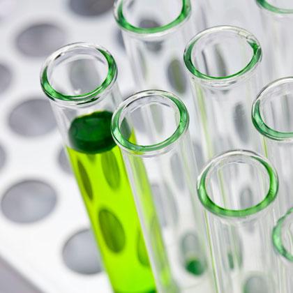 Reagenzgläser auf Pallette mit grüner Flüssigkeit/ Test tubes on pallet with green liquid