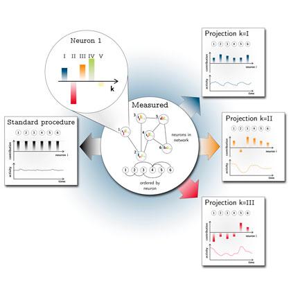 Grafik Dynamik in neuronalen Netzwerken/ Graphic Dynamics in Neuronal Networks