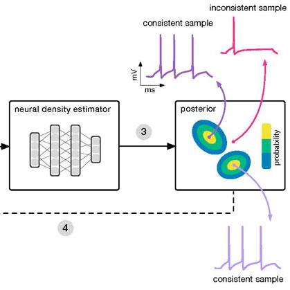 Grafik SNPE/ Graphic SNPE