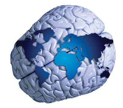 BNCN Brains4Brains
